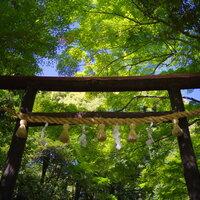 京都で縁結び・恋愛成就・美容祈願のパワースポットを訪れませんか?おすすめ神社6選