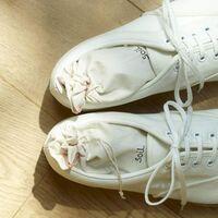大切な服や靴を守ってくれる【防虫・防臭】アイテム