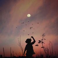 まーるいお月様を見上げながら*エネルギー満ち溢れる「満月」にしたい6つのこと