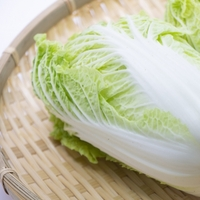 丸ごと買って上手に保存。おいしく食べたい【白菜】使い切りレシピ