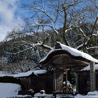 冬は家族で北陸にいこう♪お子さま連れでも楽しめる「温泉宿」見つけました