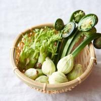 """春の恵みを美味しくいただく、旬を味わう""""山菜レシピ"""""""