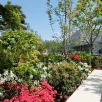 のんびり時間にうってつけ♪とっておきの「屋上庭園」で過ごすひとり時間。