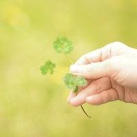 あなたも「運がいい人」になれる!幸運を受け取る習慣とご縁のつなぎ方