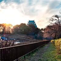名古屋で遊ぶならここ!友だち・家族・カップルで楽しめる30選