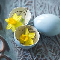 北欧のイースター、花の飾り方