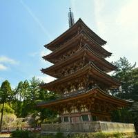 初めての「京都・伏見観光」に*おすすめの名所・観光スポットをご紹介