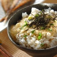 【とろろレシピ21選】とろろご飯・蕎⻨など、美味しい食べ方&味付けを大研究