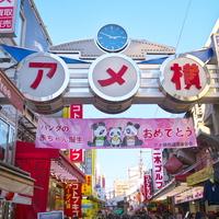 """ふしぎな魅力いっぱいの「上野」へ。のんびり""""おとな散歩""""に出かけよう!"""