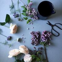 花瓶は?色の選び方は?「秋の草花」を上手に飾るためのヒント