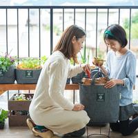 生ごみから野菜を作れるよ。ベランダで始める「コンポスト生活」のすすめ