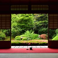 人混みが苦手な方におすすめ「京都」の知られざる穴場&観光スポット~12選~