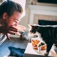 君と一緒に生きていく。猫と幸せに暮らすための8つの約束
