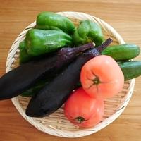 たくさん買っても大丈夫!「夏野菜」大量消費レシピ