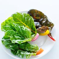 サラダやおにぎりに◎カラフル野菜【スイスチャード】のレシピ