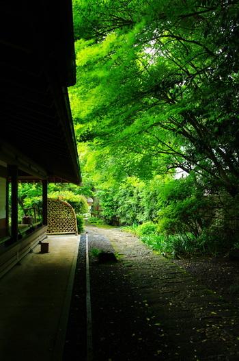 「喜泉庵」は、かつて中世期の僧らが茶を喫した場所です。 平成3年に復興しました。