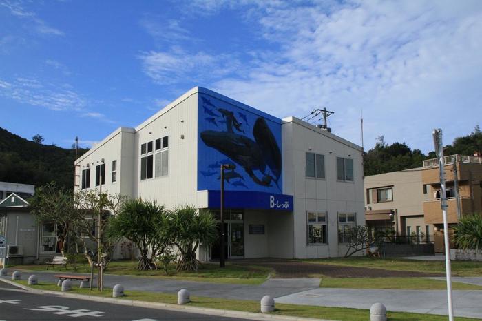 B-しっぷという小笠原村観光協会の観光案内所があります。