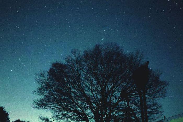 《井原市星空公園》は、もちろん星見のスポット。光害の影響も少ない《美星町)は、星空を眺めるには最高の場所。
