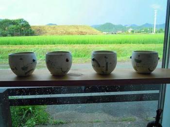 雨露に濡れた稲もしっとりと美しいですね。
