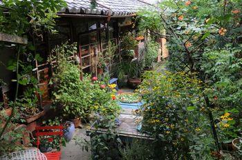 決して広くはないお庭。しかしこのお庭こそが、ベニシアさんの幼い頃からの夢が詰まった場所となっているのです。