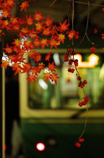 レトロでノスタルジックな空気が漂う街、鎌倉。神社やお寺など、昔ながらの町並みを眺めながらの散策はとても気持ちの良い時間ですね。 そんな鎌倉に、実はとってもかわいくておしゃれなお店がたくさん隠れているのをご存知でしたか?ここでは、散策途中にふらりと立ち寄りたくなるお店をご紹介します。