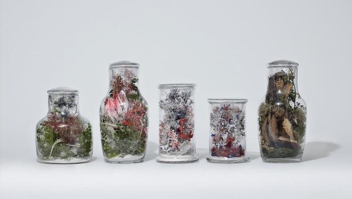 こちらは、オリジナルのガラスボトルにドライフラワーを詰めたテラリウム。 おしゃれに可愛く、お部屋で自然を楽しめます。