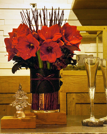 アマリリスが旬の時には、クリスマス用にお部屋を彩るのはもちろん、贈り物にも喜ばれそう。
