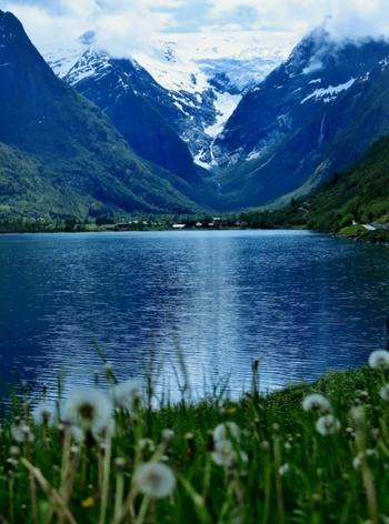 また、北欧諸国の中でもスウェーデンやフィンランドなどは「森と湖の国」と言われるほど自然豊かで、木の実やきのこを使った料理もよく見られます。