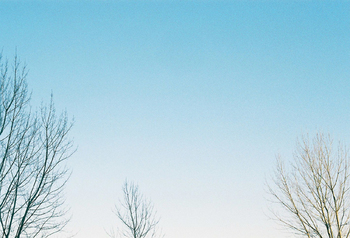 空の色も鮮やか過ぎず、澄んだ空気を感じられる写真に。