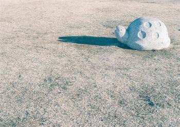 石でできたカメさんも、このフィルムで写すとなんだかノスタルジックな雰囲気に。