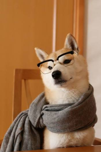 こんなコスプレも披露しちゃいます。マフラーとメガネでインテリ風♡