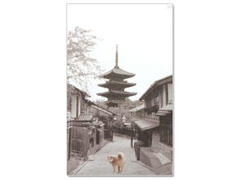 柴田部長が案内する京都の風景が美しい「京都案内」ぽち袋