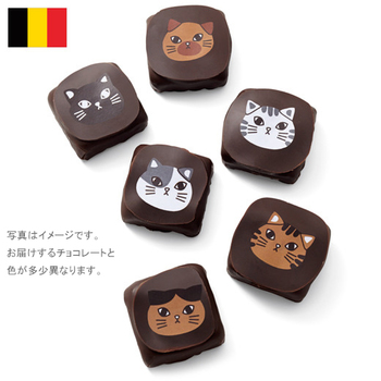 チョコフィーノ ねこチョコ  ¥2,000(+8% ¥2,156)  ベルギーの静かな街コルトレイクに店を構える「チョコフィーノ」。伝統的なベルギーチョコレートをベースにしながら、季節や土地柄を感じさせる愛らしいデザインのチョコレートで地元の人々に親しまれています。  そんなショコラトリーとフェリシモがコラボレーションしたチョコは、その愛らしいプリントとパッケージで、昨年話題沸騰! 今年もフェリシモのためだけにデザインしてもらった、キュートな新作チョコが登場です。