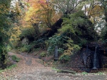 鎌倉時代に開かれた金沢街道は現在でも朝比奈ハイキングコースとして十二所周辺〜朝比奈インター付近まで歩く事ができます。また、当時の景観が残る貴重なものと史跡に指定されています。十二所神社バス停から川沿いに住宅街を歩き、写真の三郎滝からがハイキングコースの出発点。豊かな自然が残るなかを歩く、あまり起伏のない緩やかな2km程の道のりは、街歩きの気分転換にピッタリです。