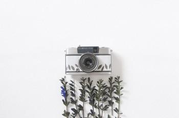 葉が舞うようなデザインで、古いカメラもモダンに変身。 どこか北欧のような雰囲気が漂います。