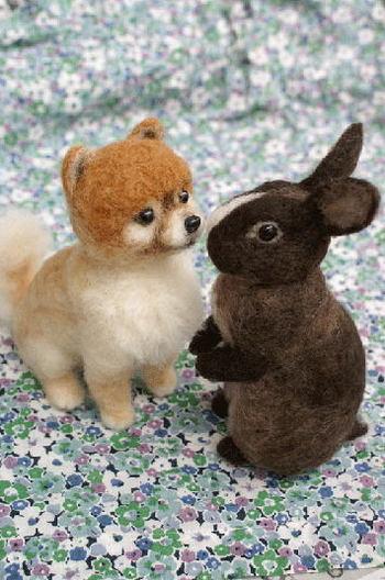 わんことウサギ。仲良しです。