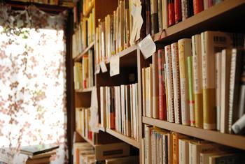 店内には所狭しとたくさんの本がひしめき合っています。古本の買い取りもしてくれるので、要らなくなった本を持っていって、新しく本を手に入れて珈琲とともに・・・なんてこともできるんです。