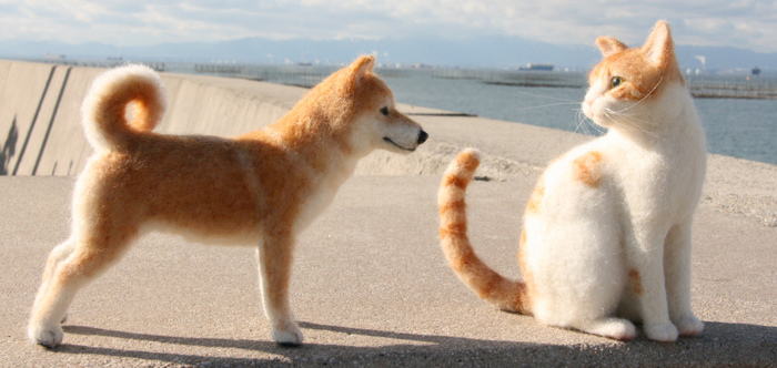 防波堤で見つめ合う二匹も…