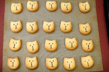 京都にある小さな焼き菓子工房「キャリコ」。主に通販を中心に焼き菓子を販売しています。 三毛猫を意味する「Calico Cat」からとった店名を表すように、少しすました顔の猫モチーフのお菓子が特徴的。