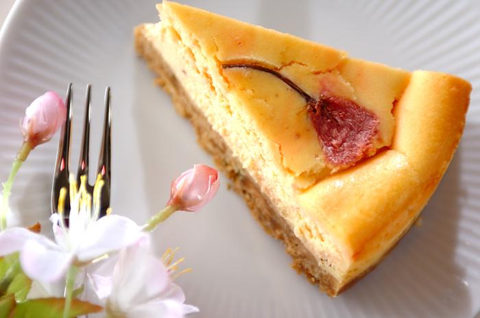 見た目も春らしい、さくらの塩漬けを使ったチーズケーキ。 春の風物詩のさくらが目も舌も楽しませてくれます。