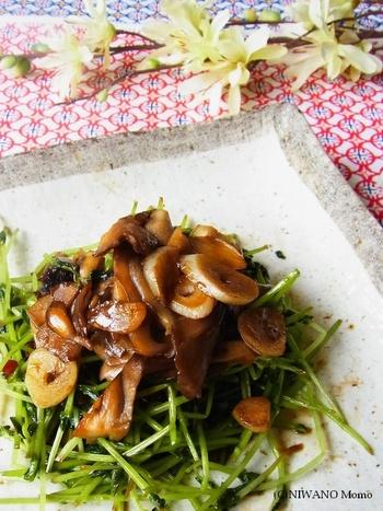 肉厚の舞茸でいただきたいオイスターソース炒めです。濃い味が豆苗によく絡みます。