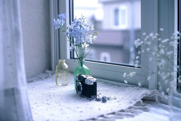 青みがかった色味に仕上がるフィルムで爽やかな印象に。