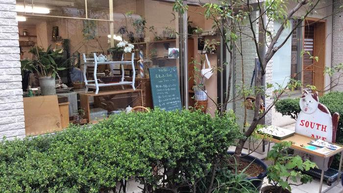 西荻窪のオーガニックジャスミン専門店「サウスアベニュー」で癒し茶タイム