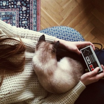 猫を飼っている人なら「あー、わかるわかる!」と共感できちゃうシチュエーションも。