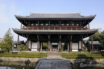 京都の中でも有名な寺院「東福寺」の苔もとても有名です。
