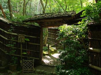 京都奥嵯峨に位置し、「平家物語」でも有名な尼寺の祇王寺。 見事な竹林と楓で有名ですが、庭を覆う苔も素晴らしく、訪れる人の目を楽しませてくれます。