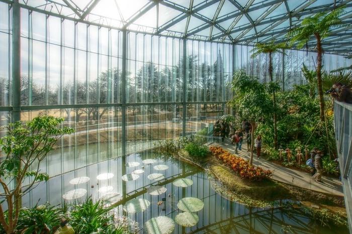 「新宿御苑 庭園」の画像検索結果
