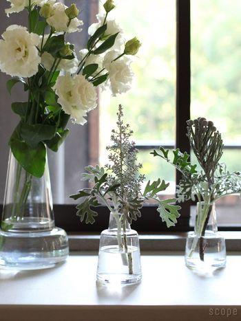 小さめな12cmは一輪挿し的に、24cmは花束を活けるのに向いています。