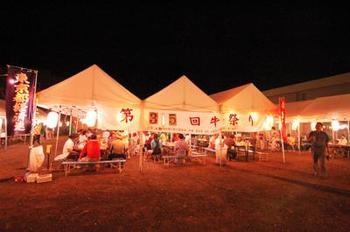 青ヶ島では昔から肉牛の生産もしていて、美味しいお肉を伝統としていくために、毎年8月10日に島の牛の品評会をするようで、その一環としてみんなが楽しめるお祭りをしよう!という始まりで「牛祭り」が伝統行事なりました。