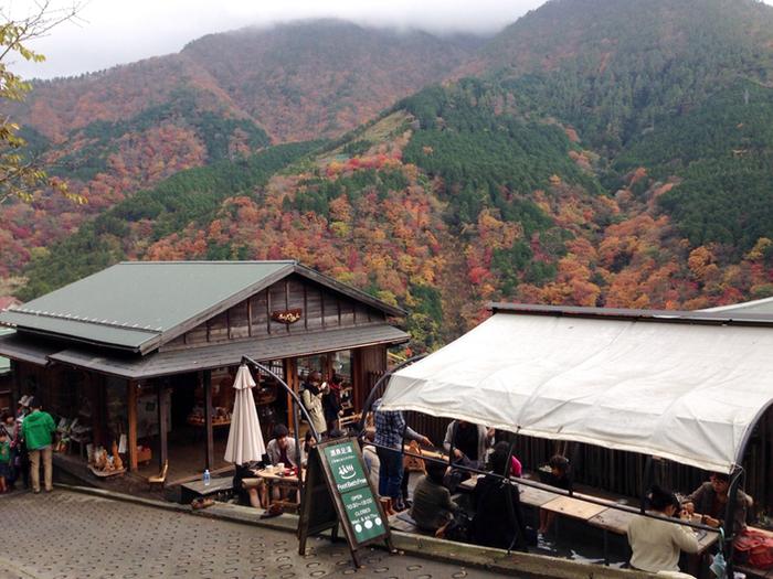 <NARAYA CAFE> 300年続いた老舗旅館の奈良屋が生まれ変わってできたこちらの古民家カフェ。 コーヒー・お酒・軽食・スイーツのメニューがあり 店内でも、隣接する足湯につかりながらでも食べられる。 箱根の自然と足湯に癒されながら、ゆったりとしたカフェ時間を過ごそう。  ◼︎名称: NARAYA CAFE ◼︎住所: 神奈川県足柄下郡箱根町宮ノ下404-13 ◼︎営業時間: 10:30~18:00 ※冬季(12月~2月)は10:30~17:00 ◼︎定休日: 水曜日、第4木曜日(1月中旬~2月下旬は冬季休業) ◼︎電話番号: 0460-82-1259 ◼︎公式サイトURL: http://www.naraya-cafe.com/j/welcome.html